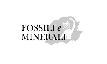 Logo-FeM2021_350px_grigio.png