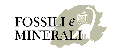 Rivista Fossili e Minerali